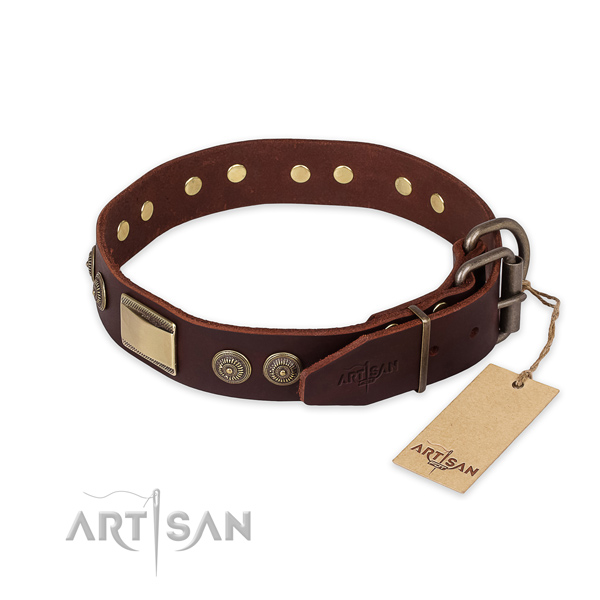Everyday walking full grain leather collar with studs for your canine