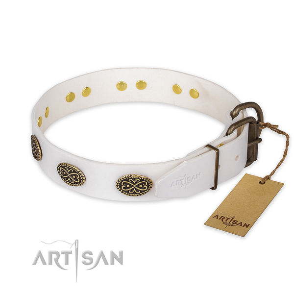 Everyday walking leather collar with adornments for your doggie