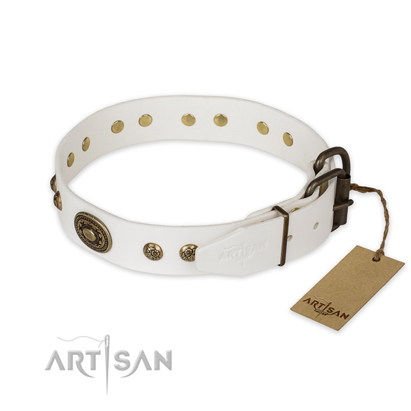 Everyday walking full grain genuine leather collar with embellishments for your dog