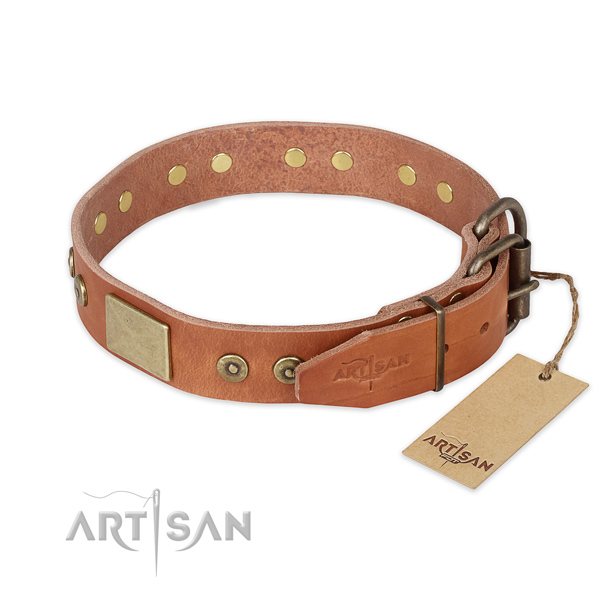 Walking full grain leather collar with embellishments for your dog