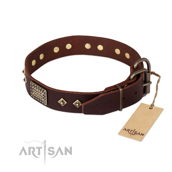 Everyday walking natural genuine leather collar with studs for your four-legged friend