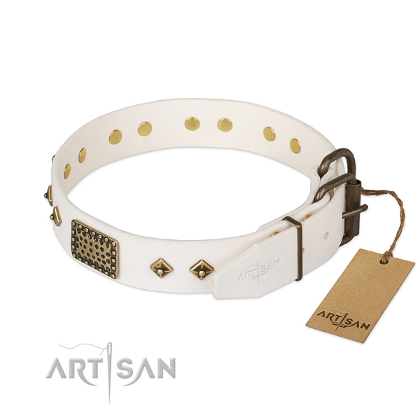 Daily walking genuine leather collar with studs for your doggie