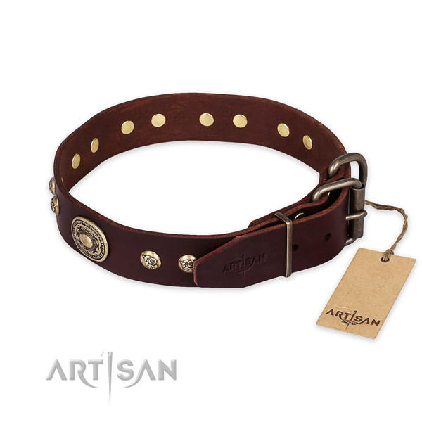 Daily walking full grain natural leather collar with adornments for your canine