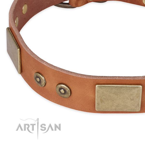Walking leather collar with rust resistant buckle and D-ring