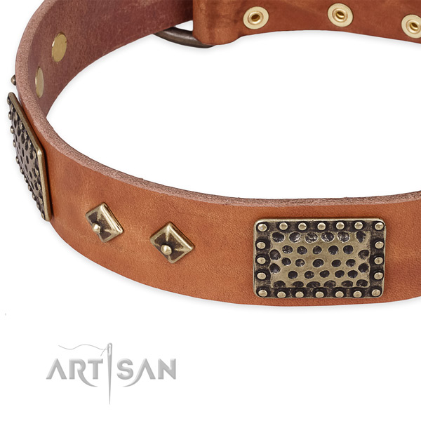 Stylish walking full grain natural leather collar with durable buckle and D-ring