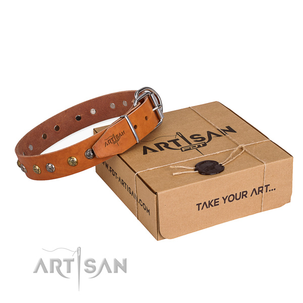 Best quality genuine leather dog collar for stylish walks