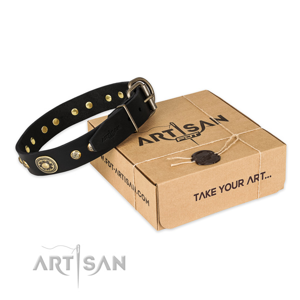 High quality genuine leather dog collar for everyday walking