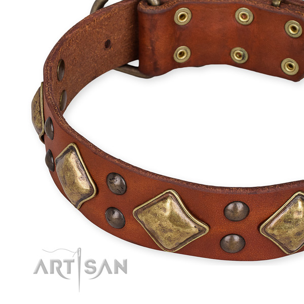 Quick to fasten leather dog collar with extra sturdy rust-proof hardware