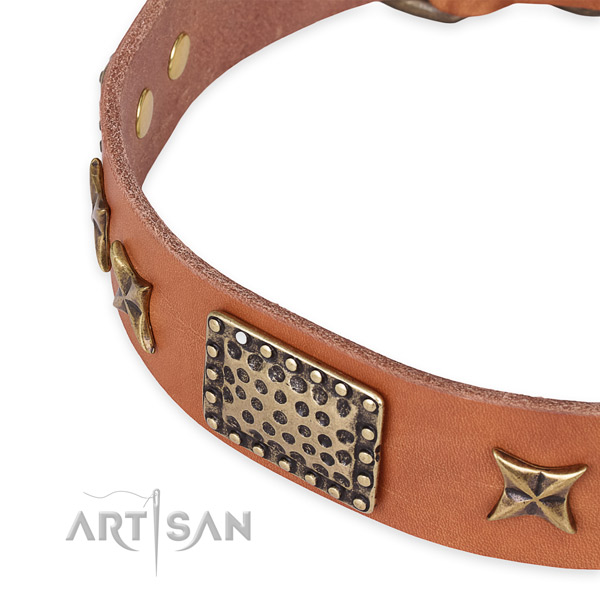 Easy to adjust leather dog collar with resistant to tear and wear durable buckle