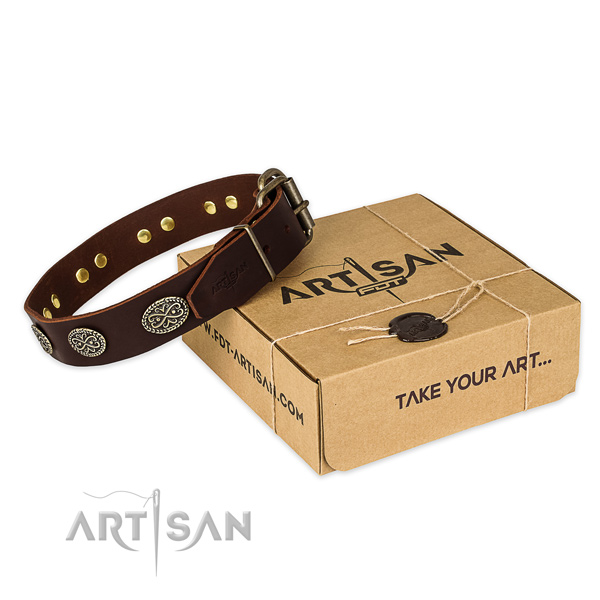 Finest quality full grain genuine leather dog collar for walking in style