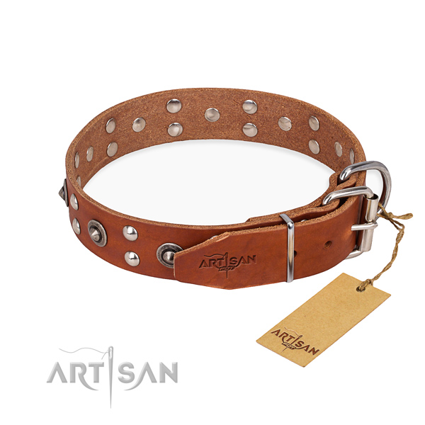 Walking genuine leather collar with studs for your canine