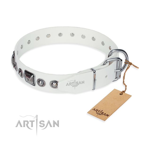 Stylish leather collar for your elegant canine
