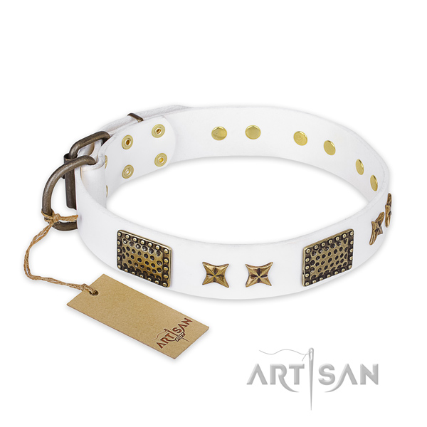 Unusual design studs on leather dog collar