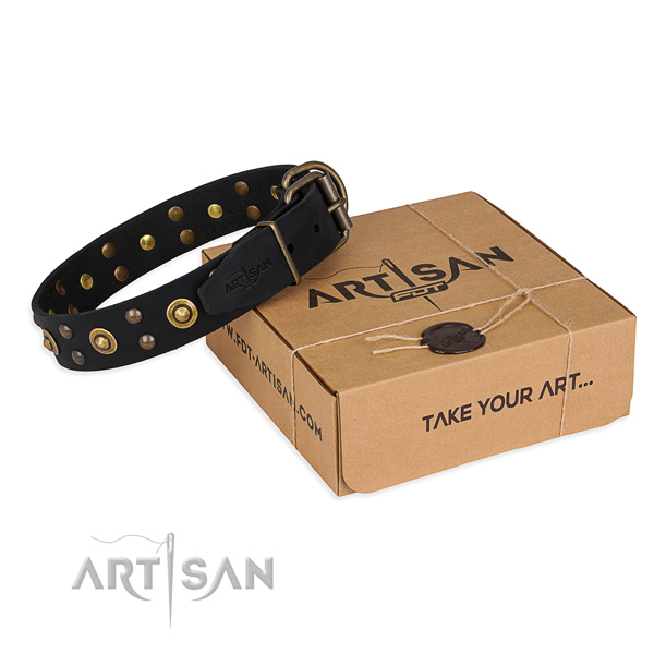 Incredible genuine leather dog collar for walking in style