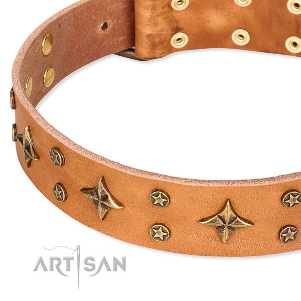 Easy to use leather dog collar with extra sturdy brass plated buckle and D-ring
