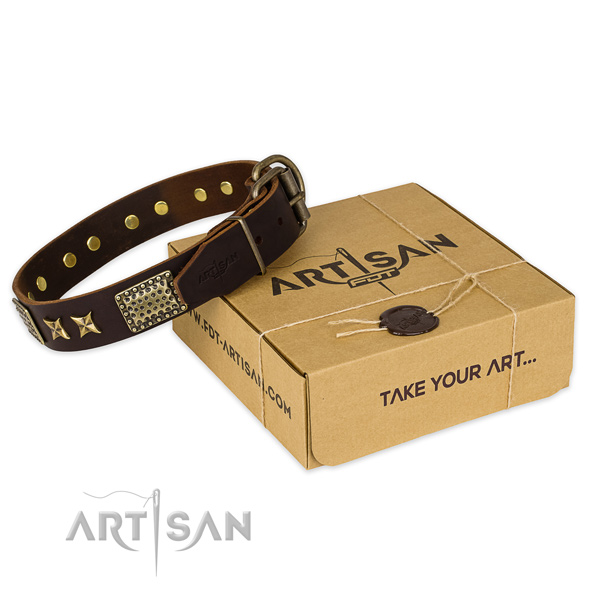 Trendy full grain genuine leather dog collar for walking