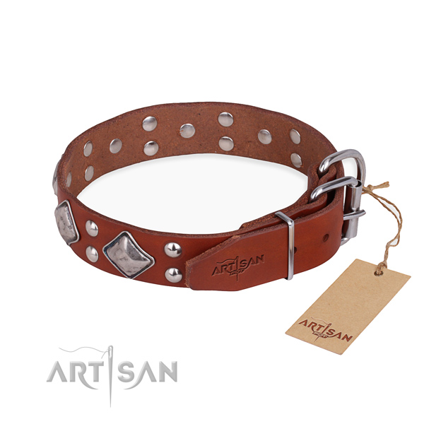 Stylish leather collar for your elegant dog