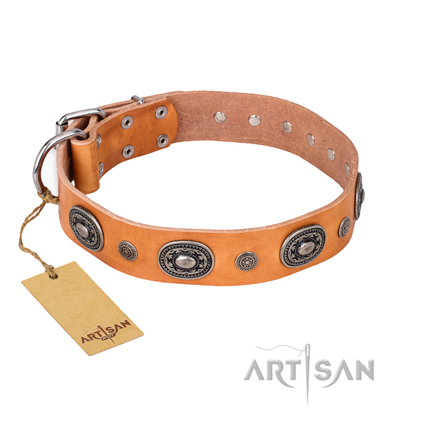 Fashionable design adornments on full grain leather dog collar
