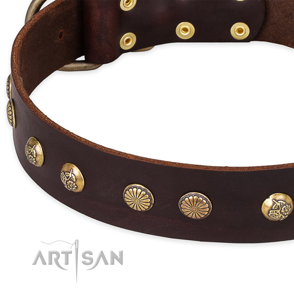 Easy to put on/off leather dog collar with extra sturdy rust-proof hardware