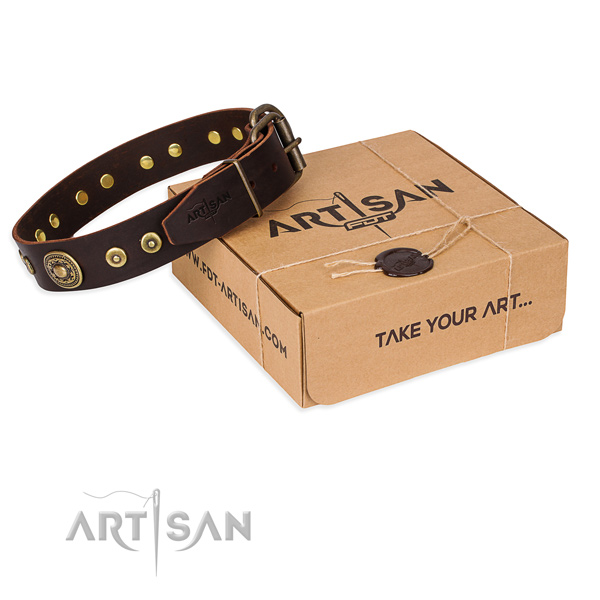 Fine quality genuine leather dog collar for everyday walking