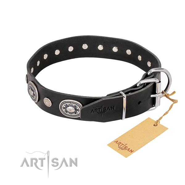 Stylish leather collar for your stunning dog