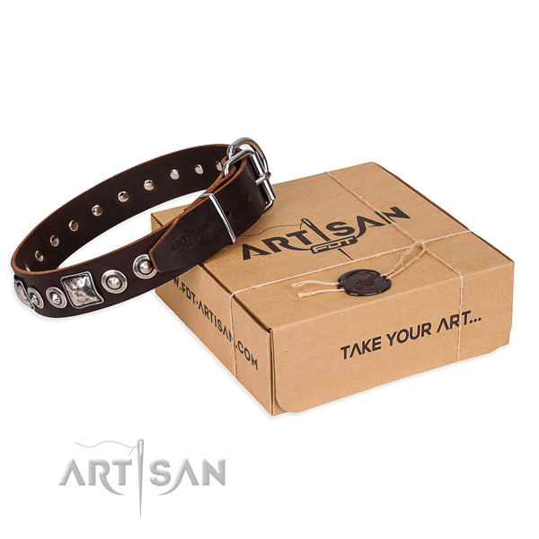 Incredible full grain natural leather dog collar for stylish walking