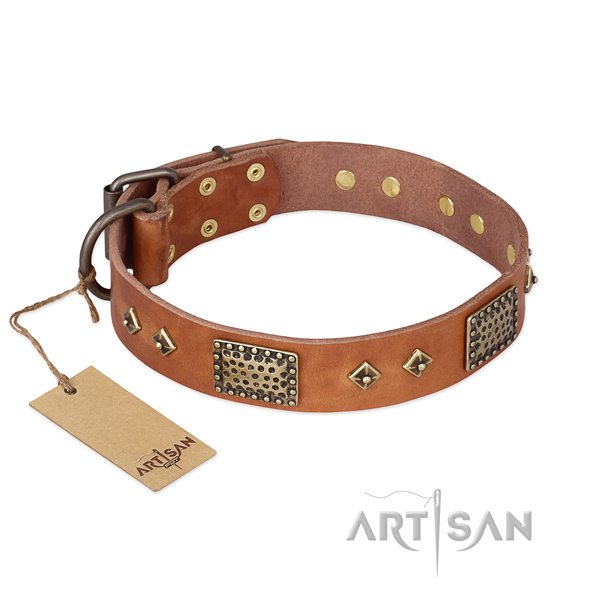 Incredible design adornments on natural genuine leather dog collar