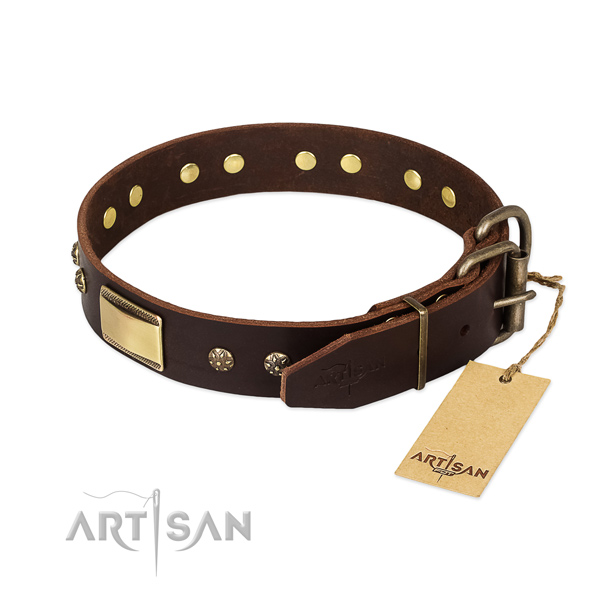 Walking full grain leather collar with decorations for your canine