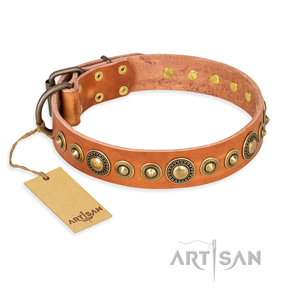 Tough leather dog collar with corrosion-resistant details