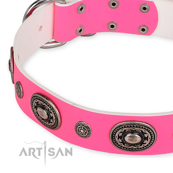 Easy to put on/off leather dog collar with extra strong non-rusting fittings