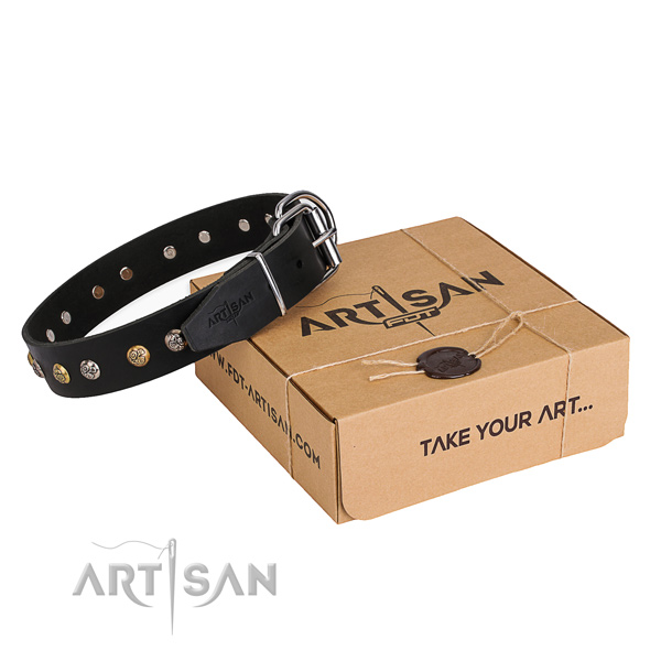 Perfect fit full grain genuine leather dog collar for everyday walking