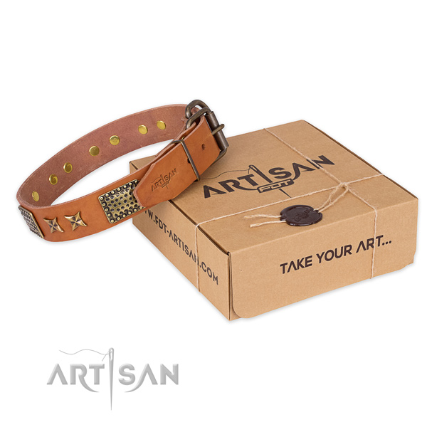 Trendy full grain natural leather dog collar for daily walking