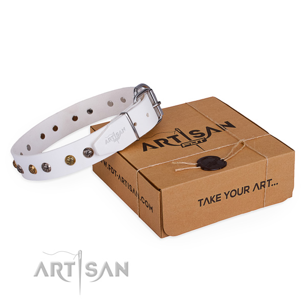 Stylish design full grain genuine leather dog collar for walking in style