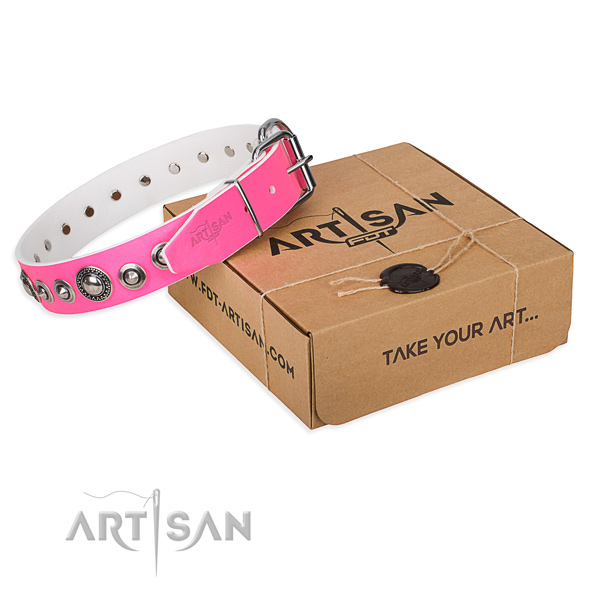 Perfect fit leather dog collar for daily use