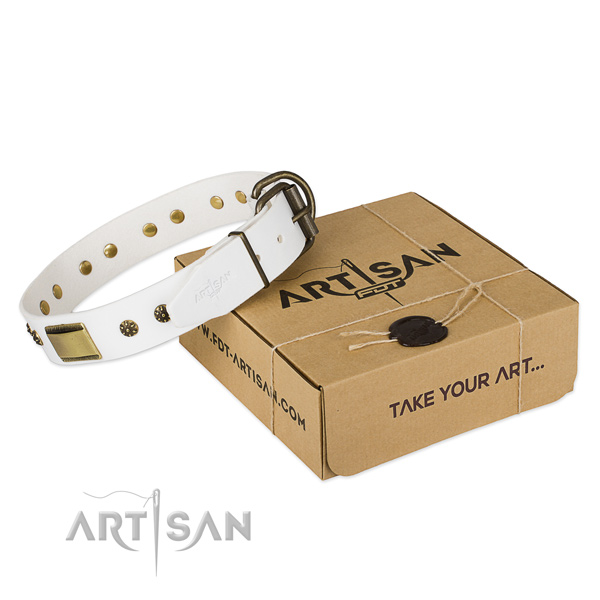 Perfect fit full grain leather dog collar for stylish walks