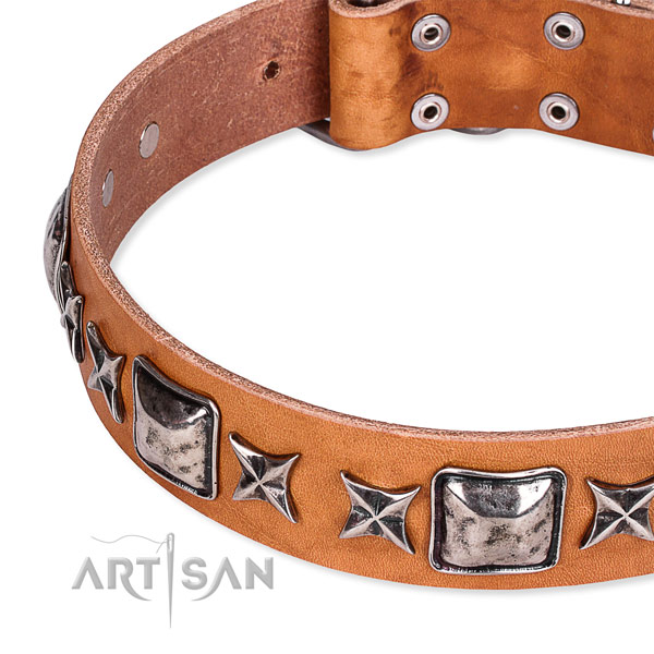 Snugly fitted leather dog collar with resistant to tear and wear rust-proof set of hardware