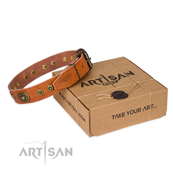 Stylish design full grain natural leather dog collar for walking