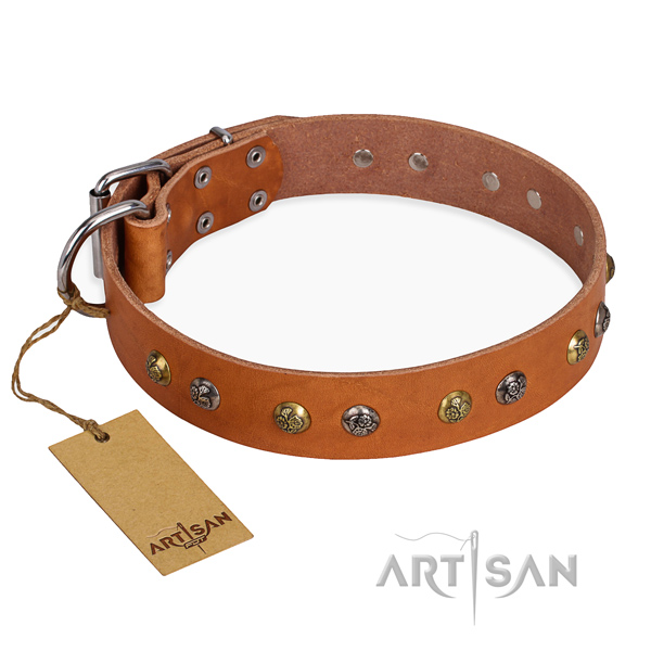 Unusual design adornments on genuine leather dog collar