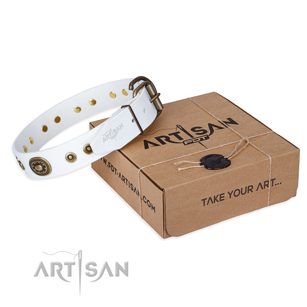 Designer genuine leather dog collar for walking