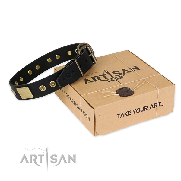 Stylish design full grain natural leather dog collar for everyday walking