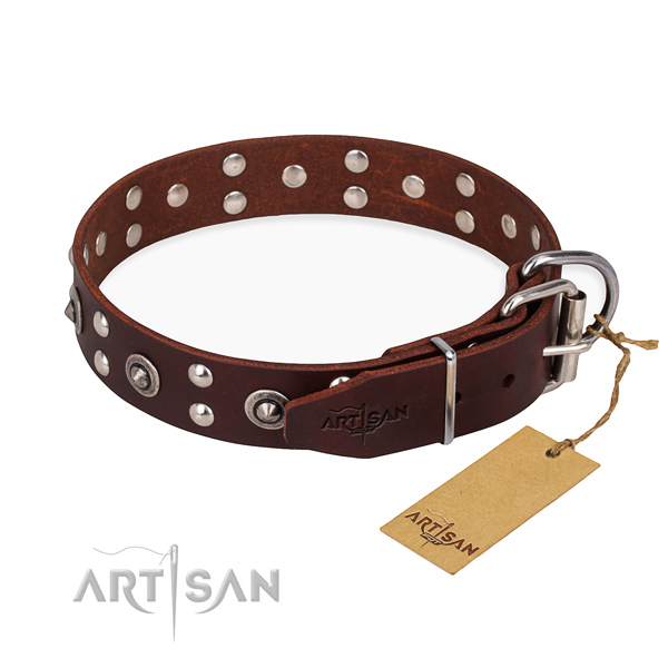Practical leather collar for your gorgeous dog