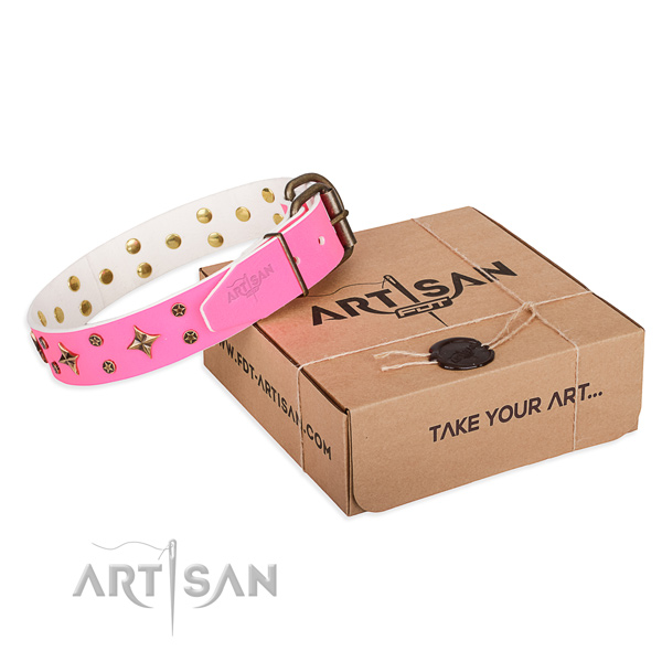 Trendy genuine leather dog collar for stylish walks