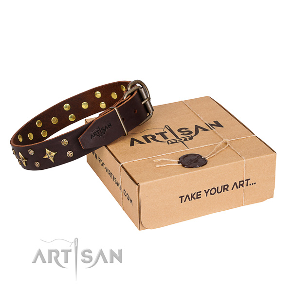 Top notch leather dog collar for everyday use