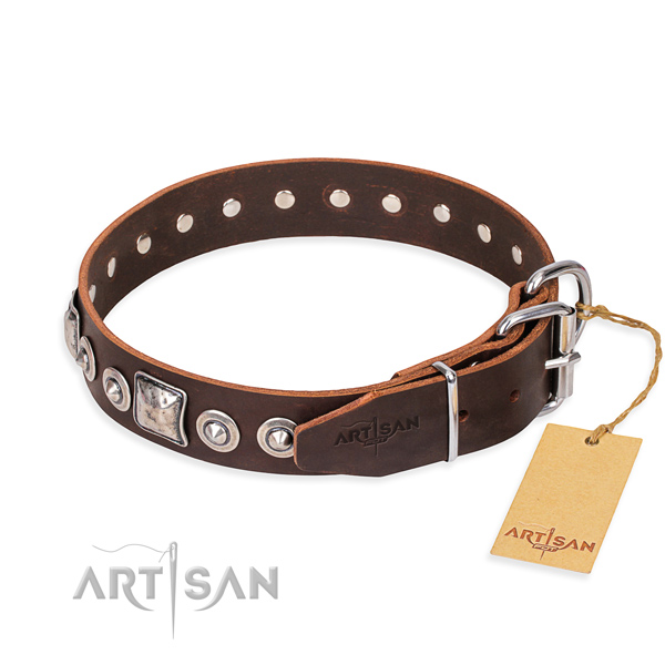 Fashionable leather collar for your handsome canine