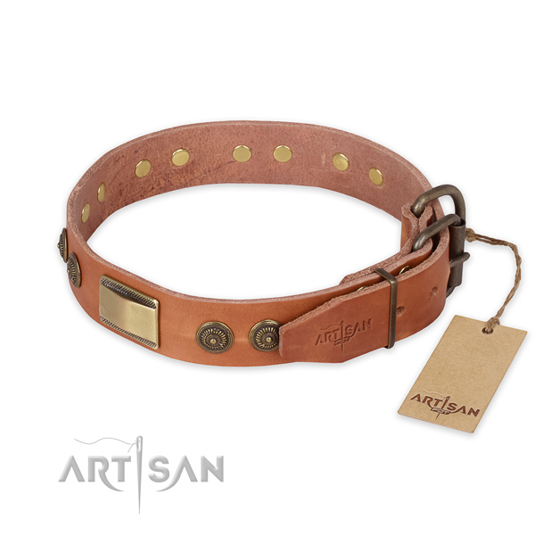Daily use leather collar with embellishments for your canine