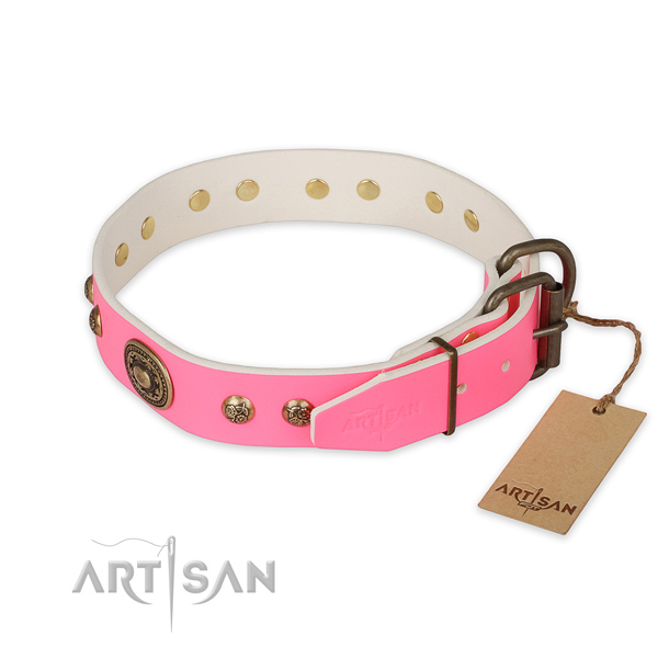 Walking natural genuine leather collar with studs for your dog
