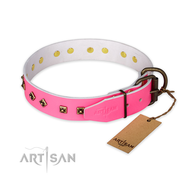 Daily walking leather collar with adornments for your canine