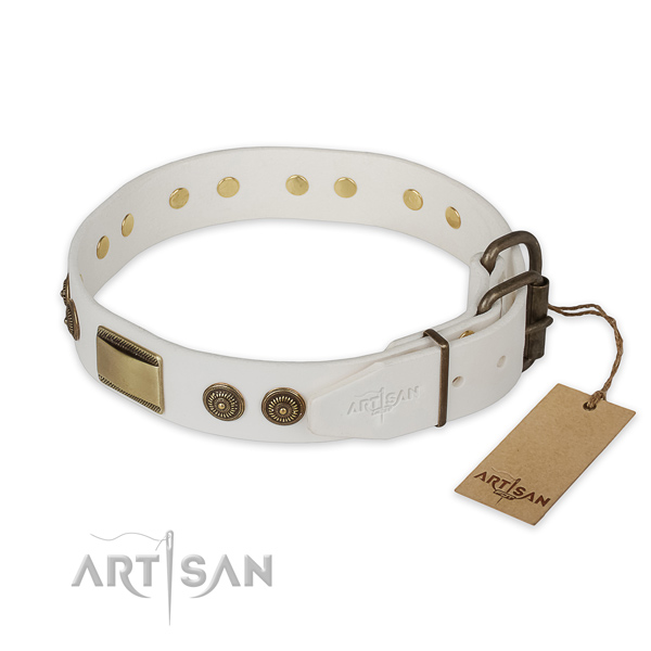 Everyday use leather collar with embellishments for your doggie