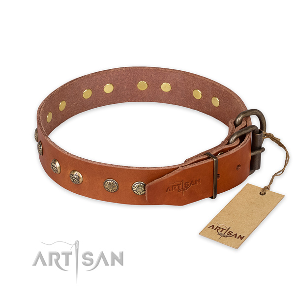 Daily walking leather collar with studs for your dog