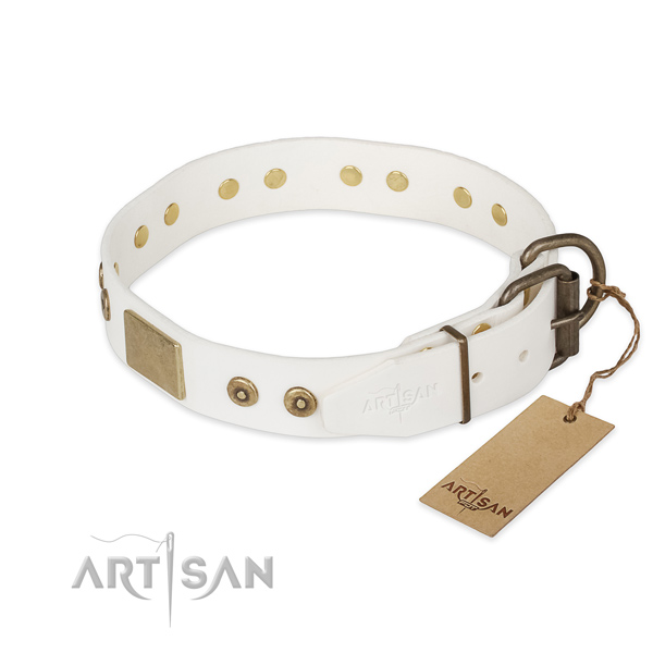 Stylish walking full grain genuine leather collar with adornments for your pet
